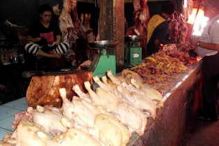 Harga Ayam Potong di Curup Kembali Turun
