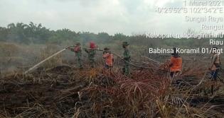 Koramil 01/Rengat Bersinergi Melakukan Pemadaman Kebakaran Lahan di Dua Desa