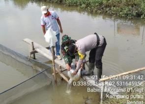 Babinsa Kodim 0302/Inhu Bersama BUMDES Menabur Benih Ikan