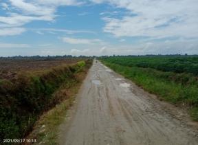 Bupati Sergai : 'Jalan Betung Desa Silau Rakyat Akan di Perbaiki Bulan Oktober 2021'