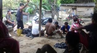 Inilah Mata Pencarian Masyarakat Desa Kampung Gandum Lebong Bengkulu