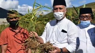 Dukung Budidaya Tanaman Jahe dan Program Gampang, Bupati Kunjungi Kecamatan Linge