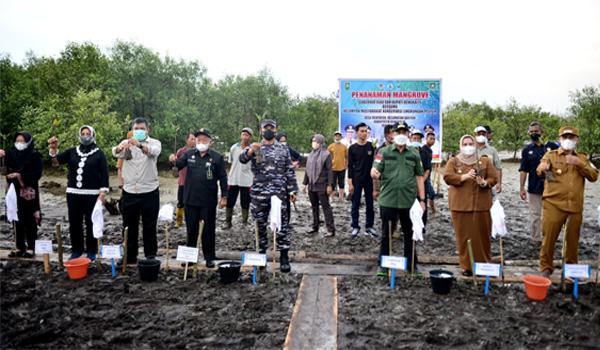 Gubernur Riau Tanam Puluhan Ribu Batang Bakau di Bengkalis