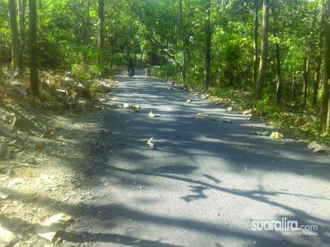 Anggaran Tahap II Belum Turun, Proyek Jalan Desa Sudah di Kerjakan Asal Jadi