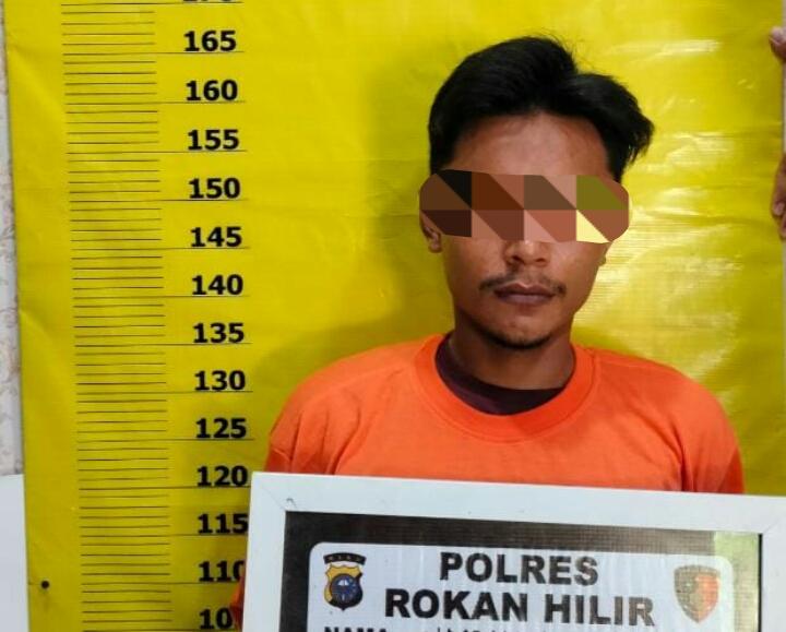 Cabuli Pacar Hingga Hamil 7 Bulan dan Blokir Telepon Saat Dihubungi, Seorang Buruh di Amankan Polres Rohil