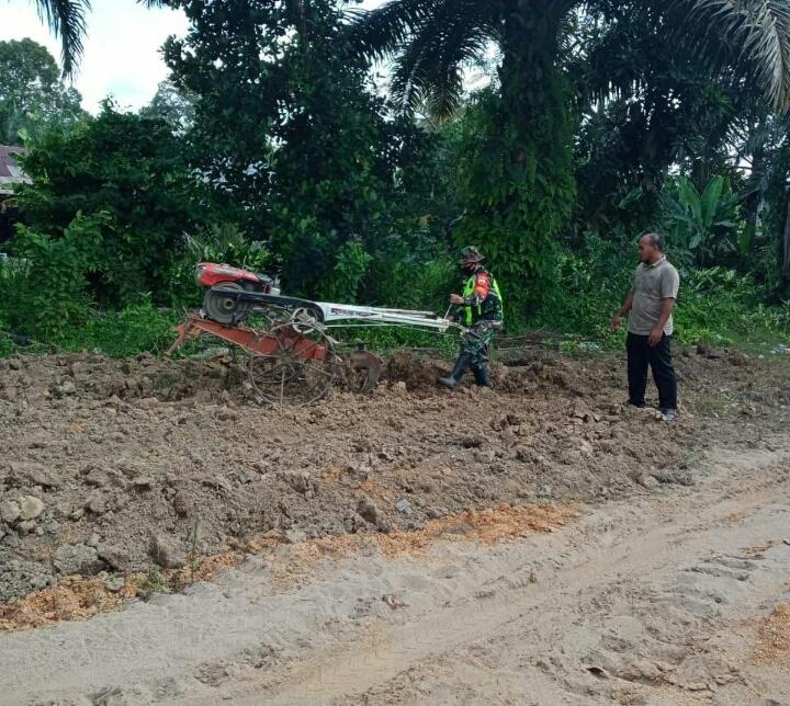 Babinsa Kodim 0302/Inhu Dampingi Petani Pengolahan Lahan