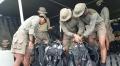 Hari Kedua Jatuhnya Sriwijaya Air Marinir Siap Selami Laut Pulau Seribu